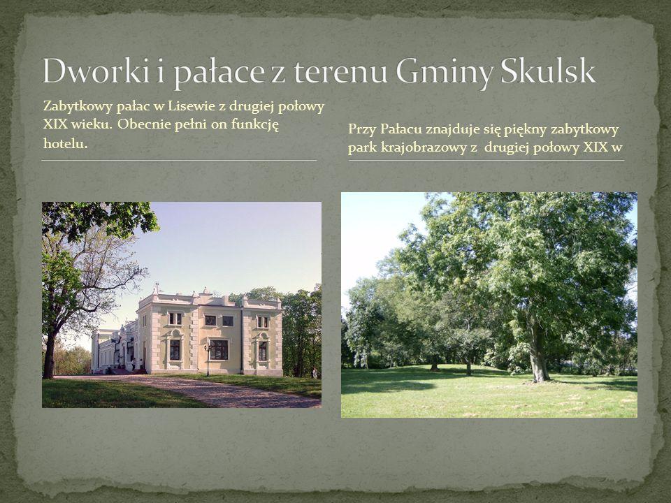 Zabytkowy pałac w Lisewie z drugiej połowy XIX wieku. Obecnie pełni on funkcję hotelu. Przy Pałacu znajduje się piękny zabytkowy park krajobrazowy z d