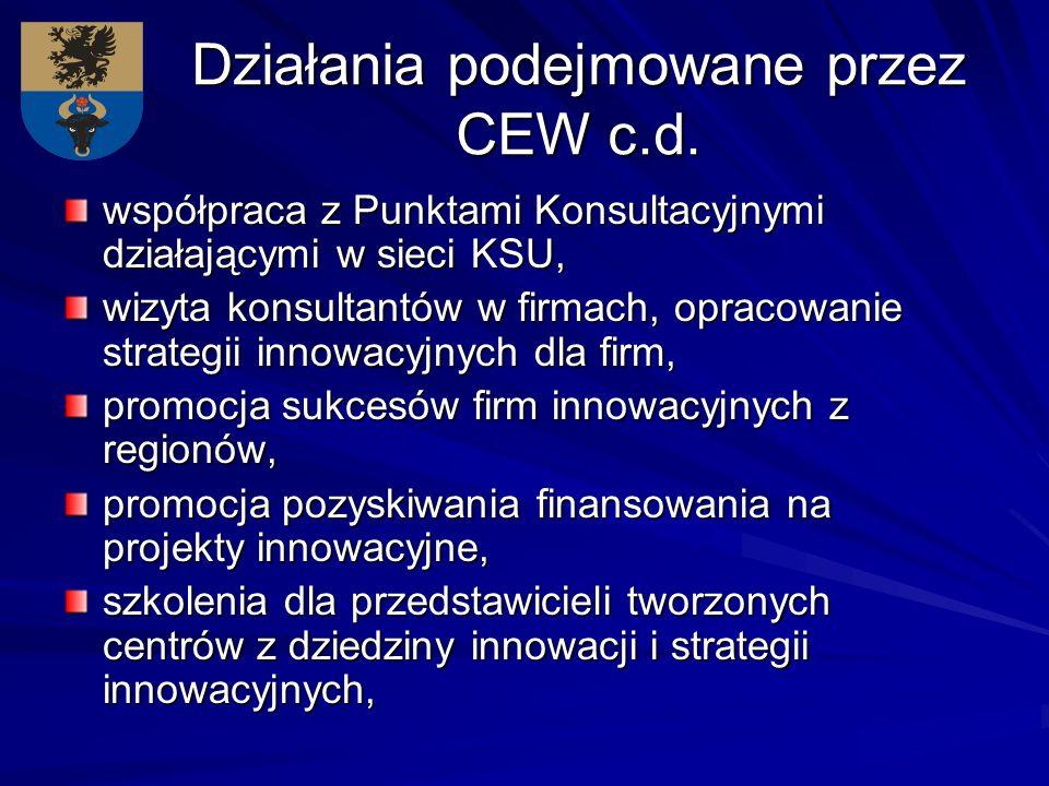 Działania podejmowane przez CEW c.d. współpraca z Punktami Konsultacyjnymi działającymi w sieci KSU, wizyta konsultantów w firmach, opracowanie strate