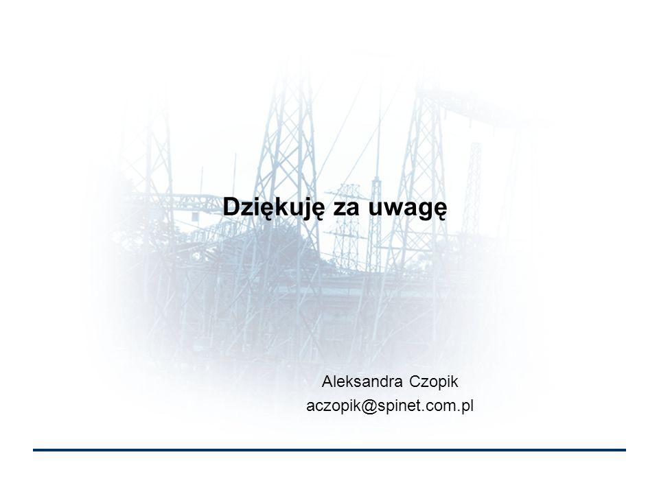 Dziękuję za uwagę Aleksandra Czopik aczopik@spinet.com.pl