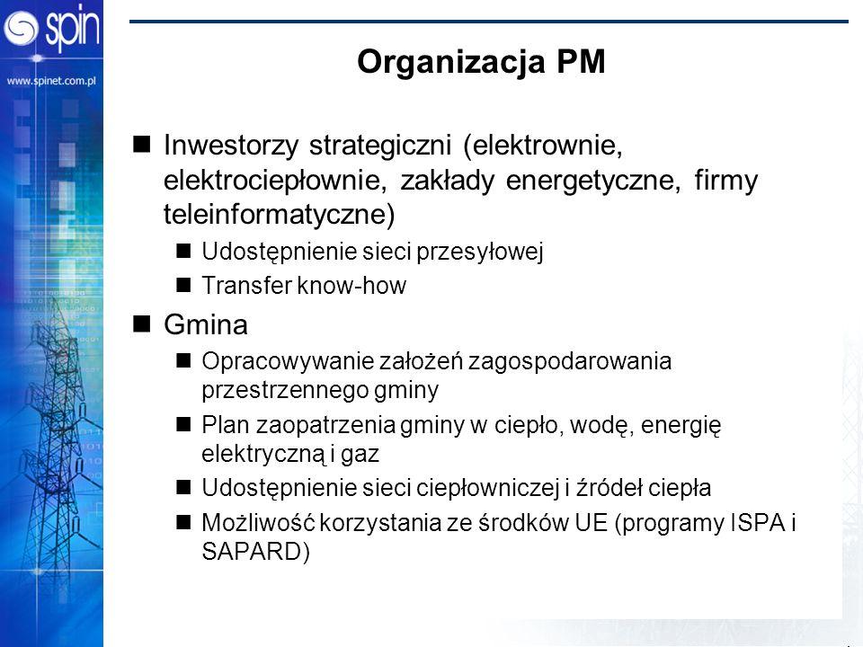 Power Bridge 2002 Organizacja PM Inwestorzy strategiczni (elektrownie, elektrociepłownie, zakłady energetyczne, firmy teleinformatyczne) Udostępnienie