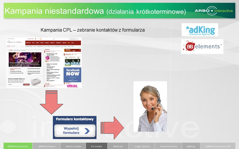 Kampania niestandardowa (działania krótkoterminowe) Kampania CPL – zebranie kontaktów z formularza