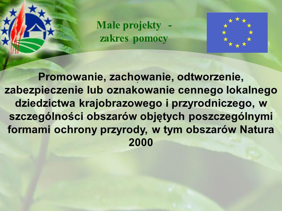 . Promowanie, zachowanie, odtworzenie, zabezpieczenie lub oznakowanie cennego lokalnego dziedzictwa krajobrazowego i przyrodniczego, w szczególności obszarów objętych poszczególnymi formami ochrony przyrody, w tym obszarów Natura 2000 Małe projekty - zakres pomocy
