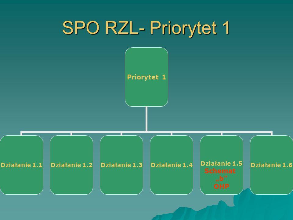 SPO RZL- Priorytet 1 Priorytet 1 Działanie 1.1Działanie 1.2Działanie 1.3Działanie 1.4Działanie 1.5 Schemat b OHP Działanie 1.6