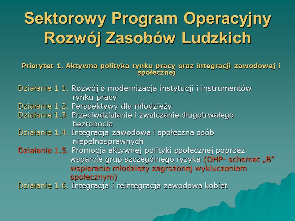 Sektorowy Program Operacyjny Rozwój Zasobów Ludzkich Priorytet 1.