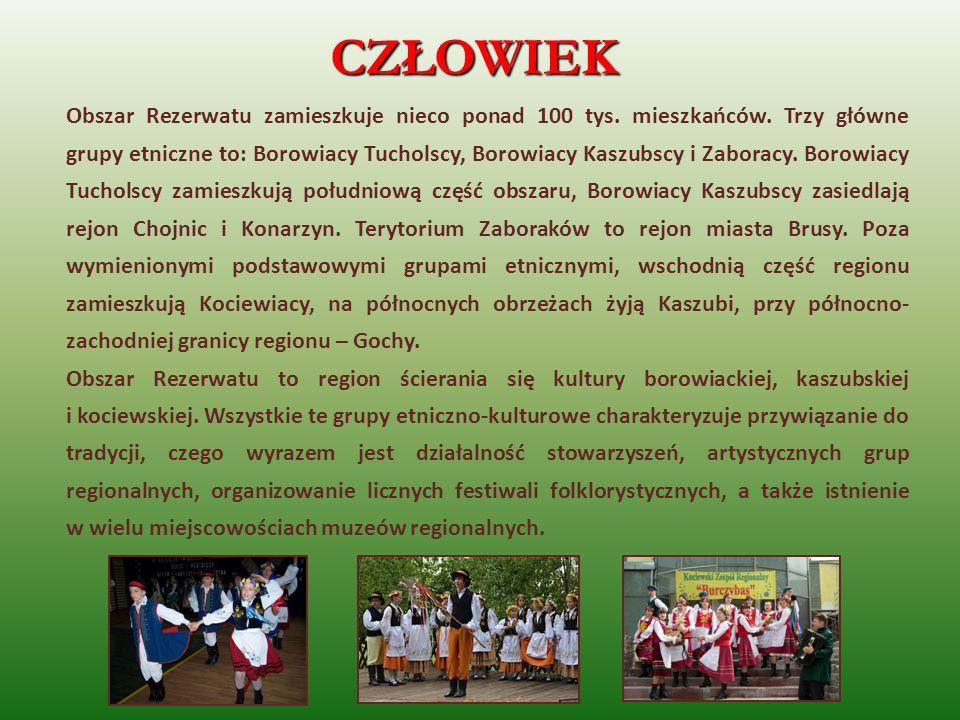 Obszar Rezerwatu zamieszkuje nieco ponad 100 tys. mieszkańców. Trzy główne grupy etniczne to: Borowiacy Tucholscy, Borowiacy Kaszubscy i Zaboracy. Bor