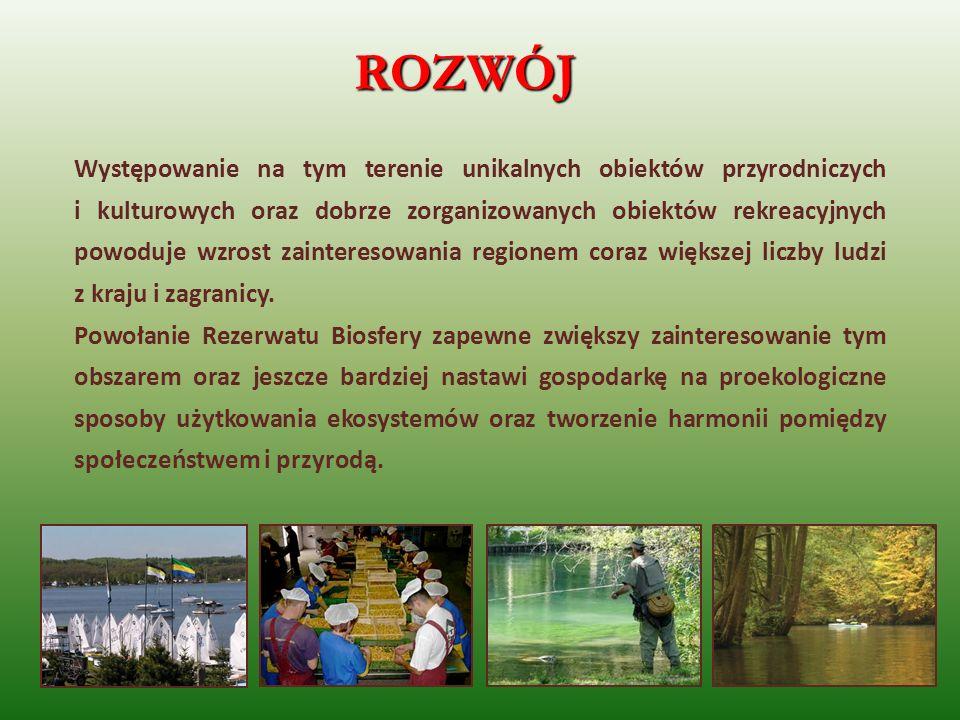 ROZWÓJ Występowanie na tym terenie unikalnych obiektów przyrodniczych i kulturowych oraz dobrze zorganizowanych obiektów rekreacyjnych powoduje wzrost
