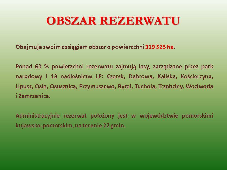 OBSZAR REZERWATU Obejmuje swoim zasięgiem obszar o powierzchni 319 525 ha. Ponad 60 % powierzchni rezerwatu zajmują lasy, zarządzane przez park narodo