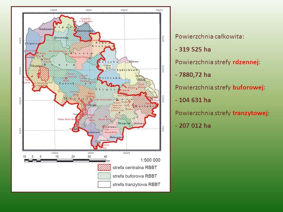 Powierzchnia całkowita: - 319 525 ha Powierzchnia strefy rdzennej: - 7880,72 ha Powierzchnia strefy buforowej: - 104 631 ha Powierzchnia strefy tranzy