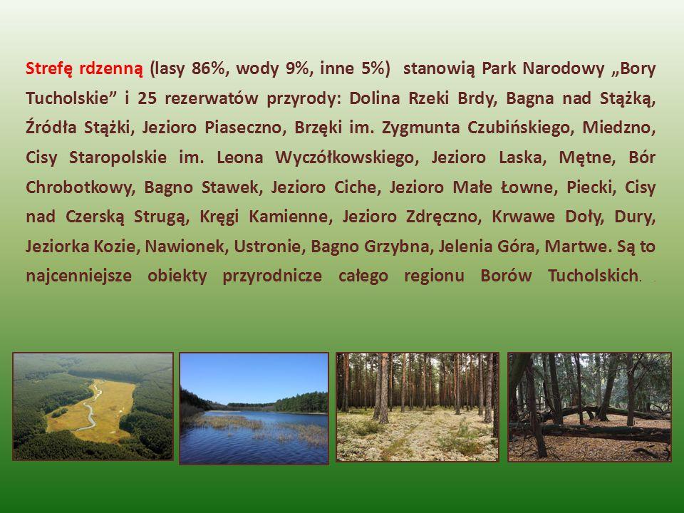 Strefę rdzenną (lasy 86%, wody 9%, inne 5%) stanowią Park Narodowy Bory Tucholskie i 25 rezerwatów przyrody: Dolina Rzeki Brdy, Bagna nad Stążką, Źród