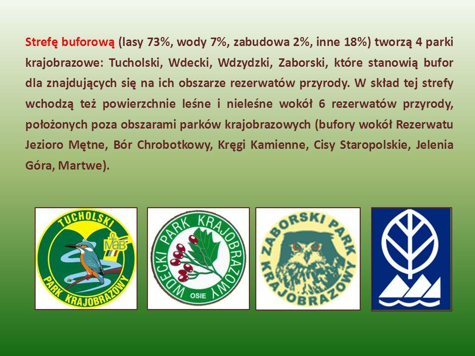 Strefę buforową (lasy 73%, wody 7%, zabudowa 2%, inne 18%) tworzą 4 parki krajobrazowe: Tucholski, Wdecki, Wdzydzki, Zaborski, które stanowią bufor dl