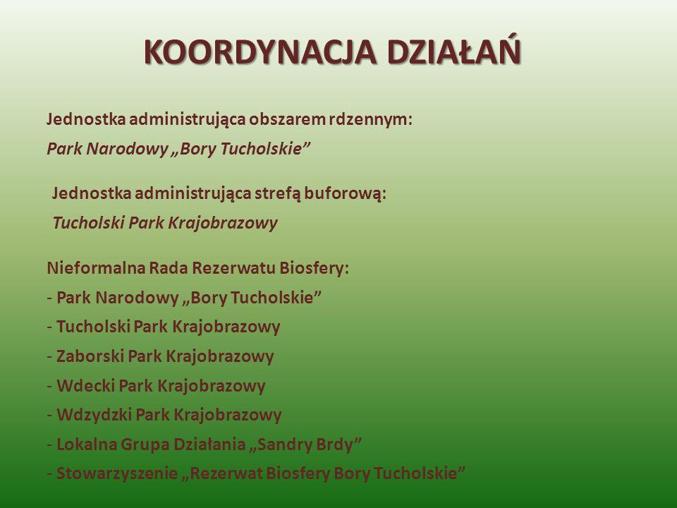 KOORDYNACJA DZIAŁAŃ Jednostka administrująca obszarem rdzennym: Park Narodowy Bory Tucholskie Jednostka administrująca strefą buforową: Tucholski Park