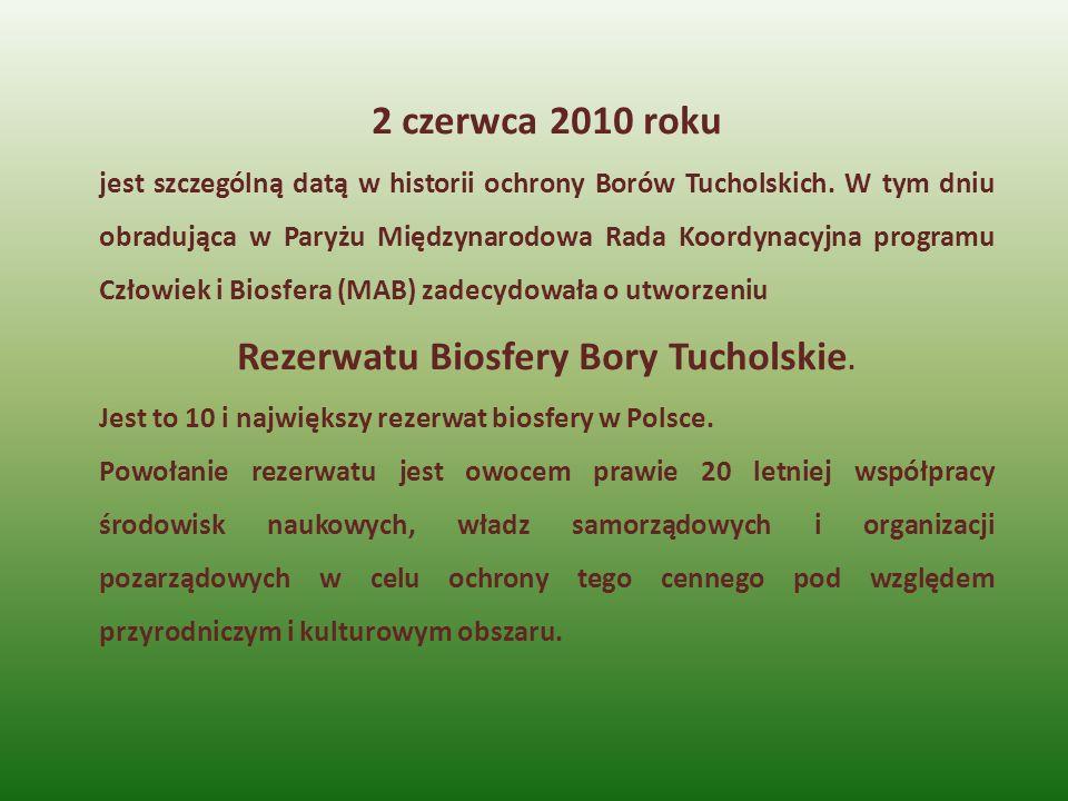 2 czerwca 2010 roku jest szczególną datą w historii ochrony Borów Tucholskich. W tym dniu obradująca w Paryżu Międzynarodowa Rada Koordynacyjna progra