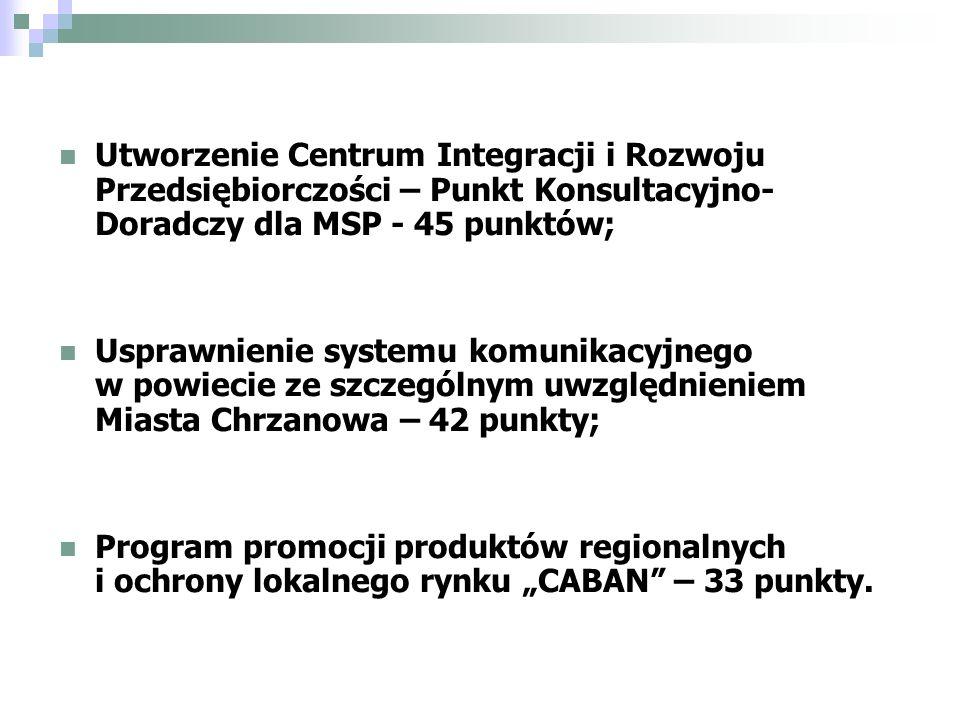 Utworzenie Centrum Integracji i Rozwoju Przedsiębiorczości – Punkt Konsultacyjno- Doradczy dla MSP - 45 punktów; Usprawnienie systemu komunikacyjnego w powiecie ze szczególnym uwzględnieniem Miasta Chrzanowa – 42 punkty; Program promocji produktów regionalnych i ochrony lokalnego rynku CABAN – 33 punkty.