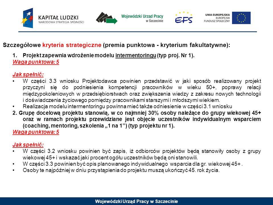 Wojewódzki Urząd Pracy w Szczecinie 1.Projekt zapewnia wdrożenie modelu intermentoringu (typ proj.