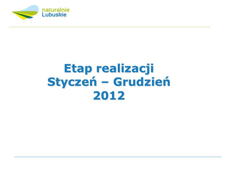 Etap realizacji Styczeń – Grudzień 2012