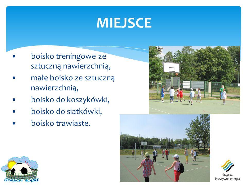 boisko treningowe ze sztuczną nawierzchnią, małe boisko ze sztuczną nawierzchnią, boisko do koszykówki, boisko do siatkówki, boisko trawiaste. MIEJSCE