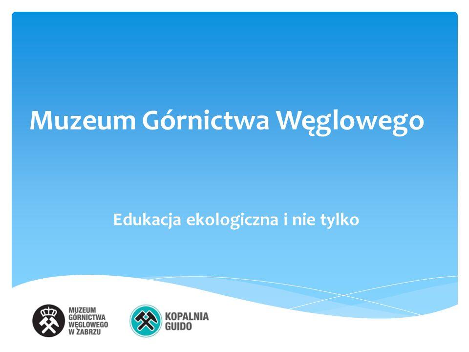 Muzeum Górnictwa Węglowego Edukacja ekologiczna i nie tylko