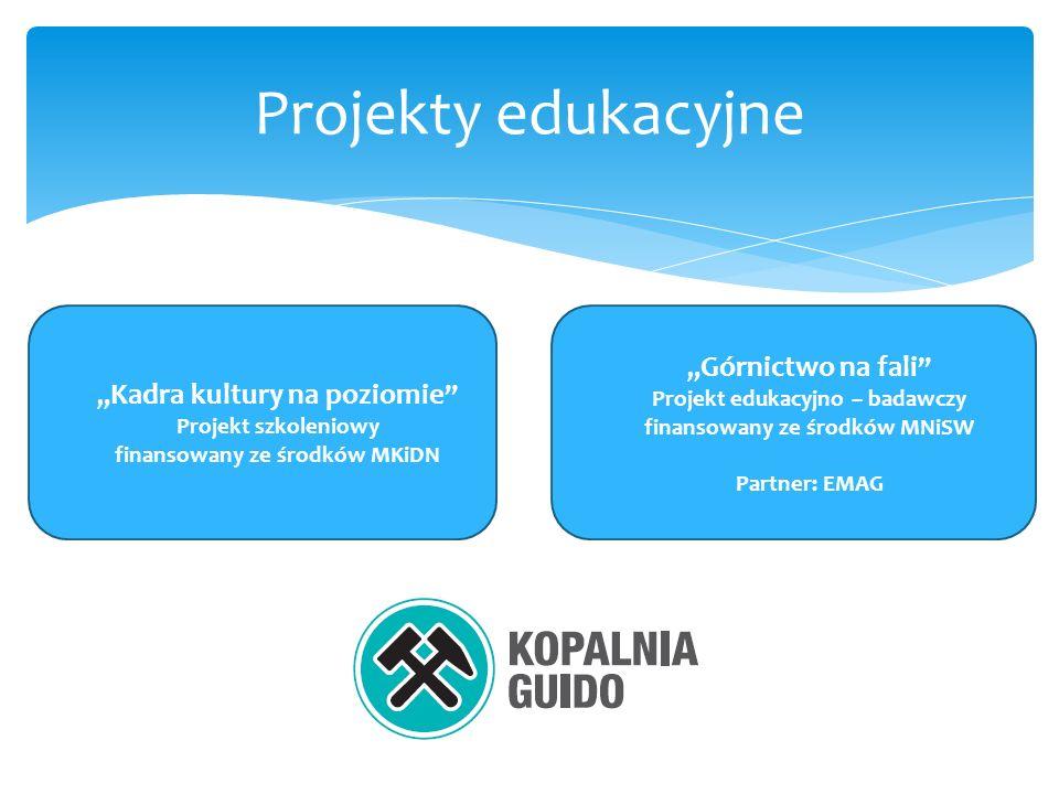 Projekty edukacyjne Kadra kultury na poziomie Projekt szkoleniowy finansowany ze środków MKiDN Górnictwo na fali Projekt edukacyjno – badawczy finansowany ze środków MNiSW Partner: EMAG