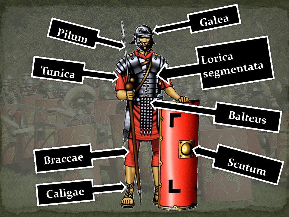 Pilum Lorica segmentata Lorica segmentata Balteus Tunica Galea Scutum Caligae Braccae