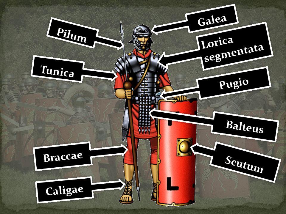 Pilum Lorica segmentata Lorica segmentata Balteus Tunica Galea Scutum Caligae Braccae Pugio