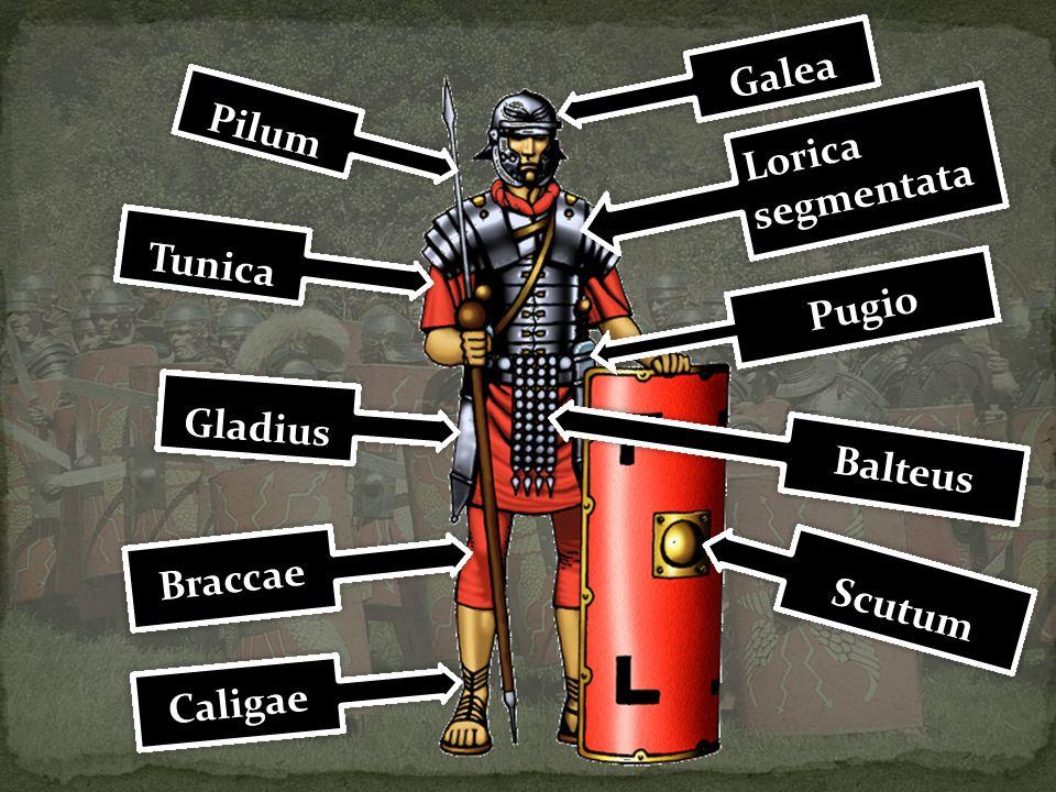 Pilum Lorica segmentata Lorica segmentata Balteus Gladius Tunica Galea Scutum Caligae Braccae Pugio
