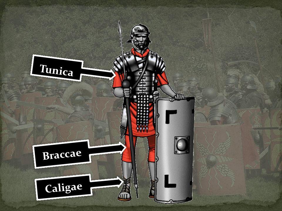 Tunica Caligae Braccae