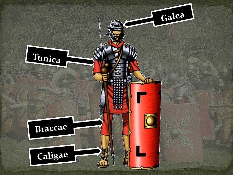 Chronił głowę rzymskiego piechura; Wykonany ze skóry obitej metalową blachą; Po bokach ruchome blaszki policzkowe (boccula); Centurioni i wyżsi oficerowie zakładali hełm z trzemia piórami lub końską kitą.
