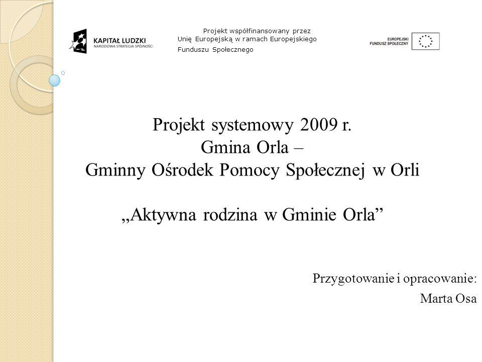 Projekt systemowy 2009 r.