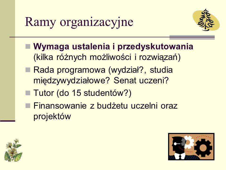 Ramy organizacyjne Wymaga ustalenia i przedyskutowania (kilka różnych możliwości i rozwiązań) Rada programowa (wydział?, studia międzywydziałowe? Sena