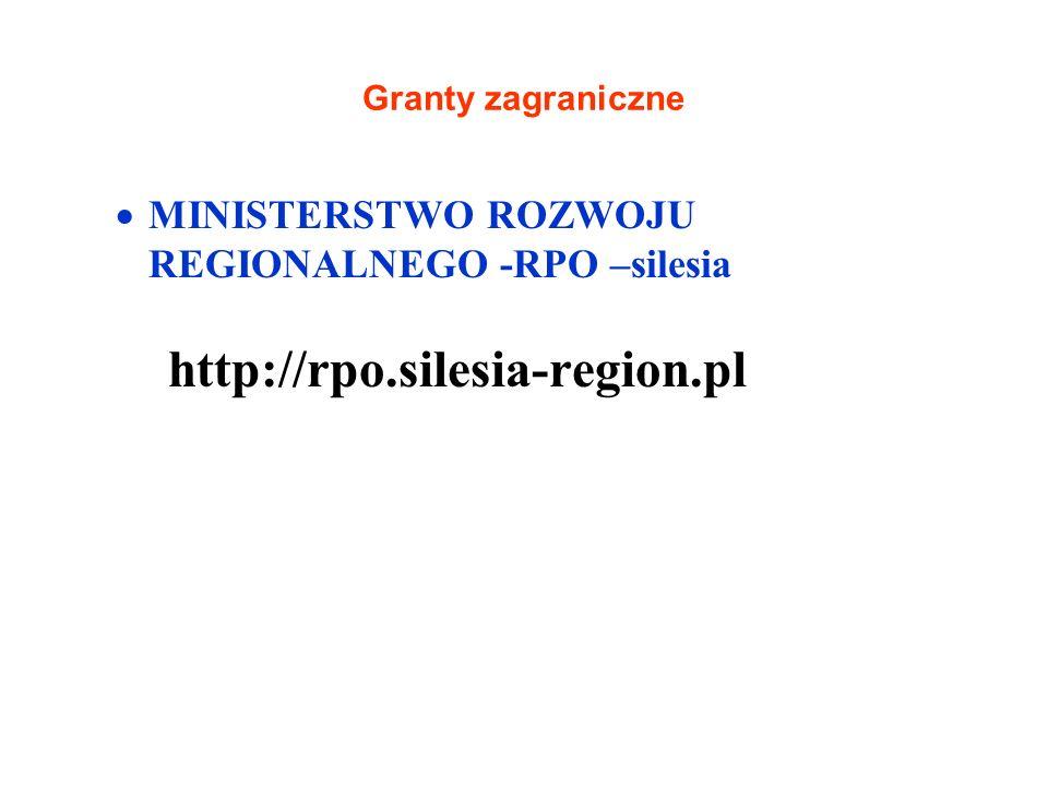 Granty zagraniczne MINISTERSTWO ROZWOJU REGIONALNEGO -RPO –silesia http://rpo.silesia-region.pl