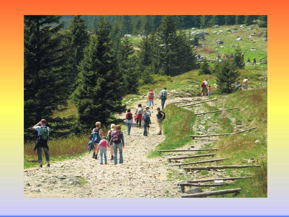 Zadania i umiejętności zawodowe Opracowywanie programów imprez turystycznych.