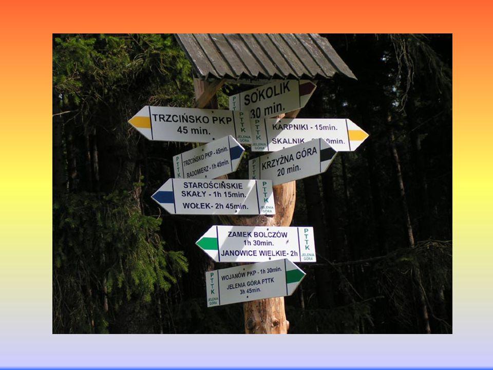 Rynek pracy Technik obsługi turystycznej może być zatrudniony w: biurach podróży, agencjach turystycznych, ośrodkach informacji turystycznej, organach administracji samorządowej zajmujących się organizacją i promocją turystyki, ośrodkach wczasowych jako animator czasu wolnego.