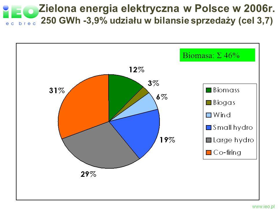 www.ieo.pl Zielona energia elektryczna w Polsce w 2006r. 250 GWh -3,9% udziału w bilansie sprzedaży (cel 3,7) Biomasa: Σ 46%