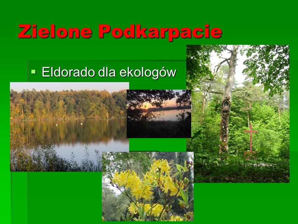 Zielone Podkarpacie Eldorado dla ekologów Eldorado dla ekologów