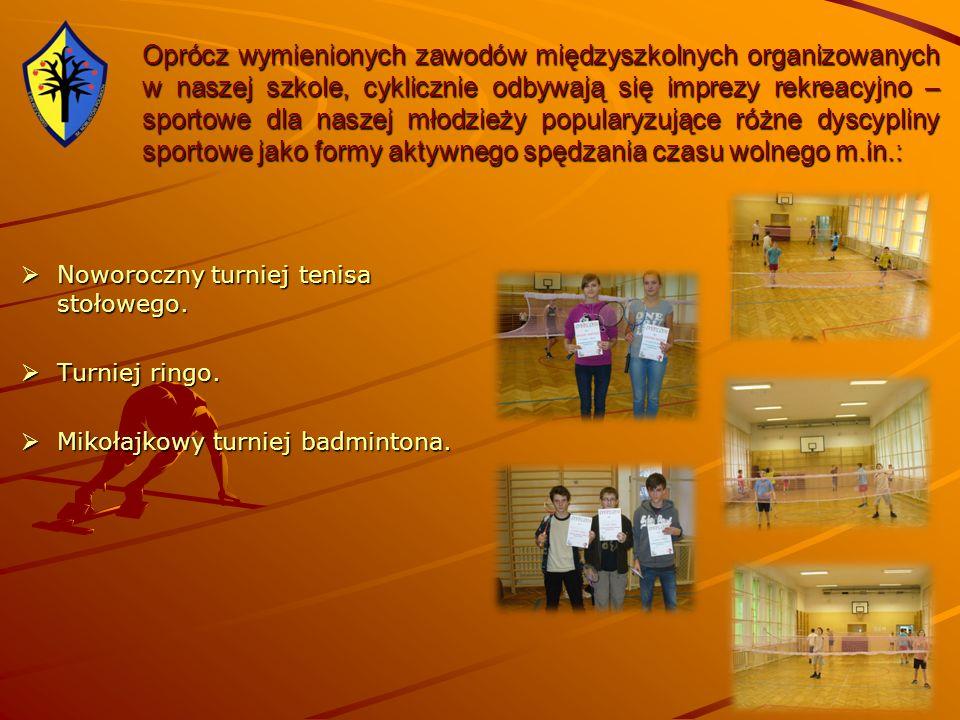 Oprócz wymienionych zawodów międzyszkolnych organizowanych w naszej szkole, cyklicznie odbywają się imprezy rekreacyjno – sportowe dla naszej młodzież