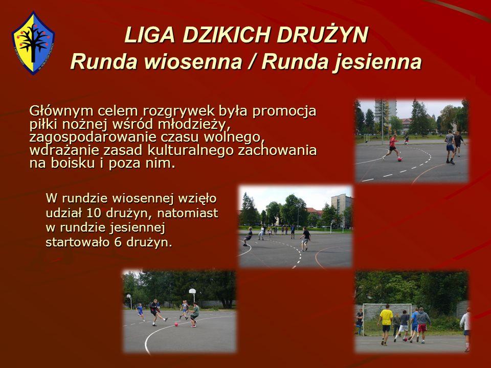 LIGA DZIKICH DRUŻYN Runda wiosenna / Runda jesienna Głównym celem rozgrywek była promocja piłki nożnej wśród młodzieży, zagospodarowanie czasu wolnego