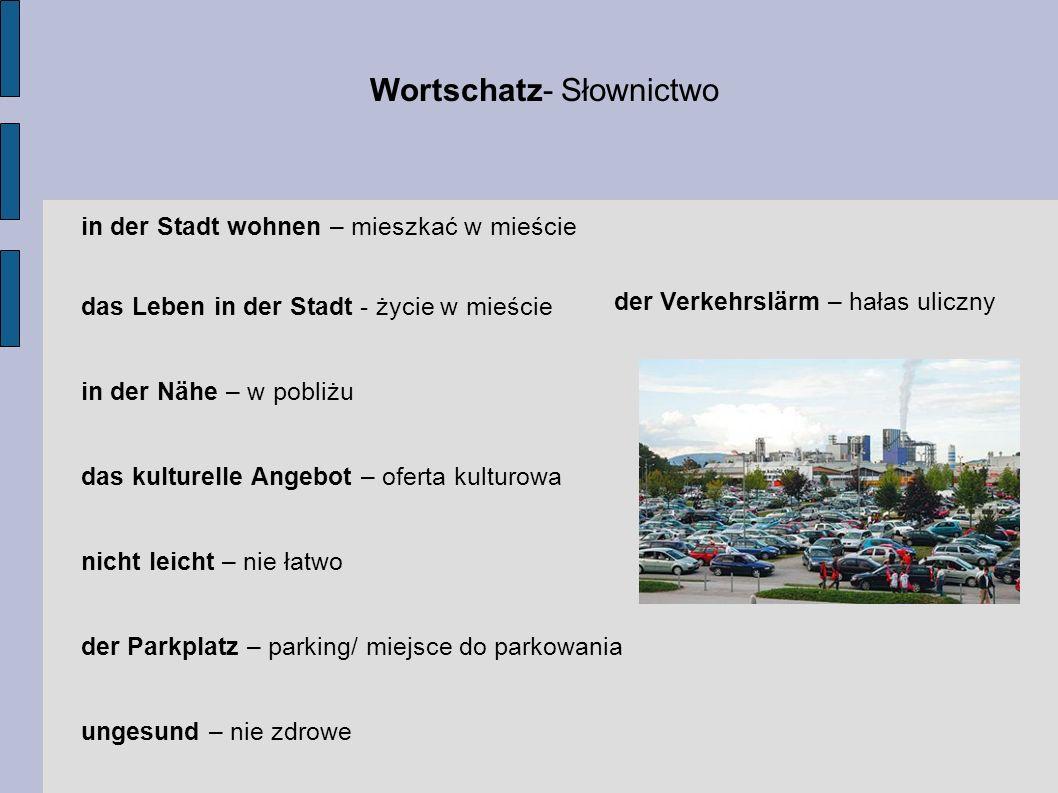 Dodatkowe słownictwo : die Großstadt -duże miasto bequem - wygodnie der Stadtlärm – hałas miejski einen Einkaufsbummel machen – chodzić na zakupy anonym leben – żyć anonimowo der Unfall – wypadek die Abgase – spaliny die Stadt verschmutzen – zanieczyszczać miasto unter Lärm leiden – cierpieć z powodu hałasu