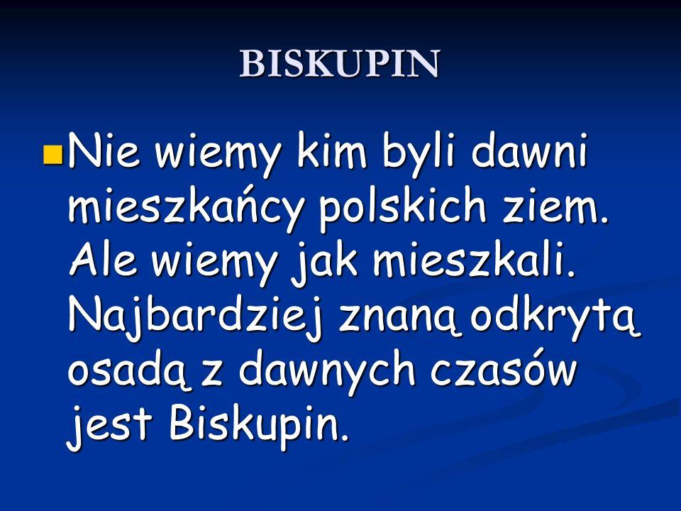 PIERWSI WLADCY POLSKI I DOBRAWA WG. JANA MATEJKO