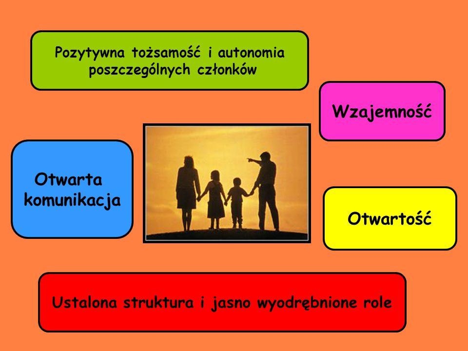 Pozytywna tożsamość i autonomia poszczególnych członków Otwarta komunikacja Wzajemność Otwartość Ustalona struktura i jasno wyodrębnione role
