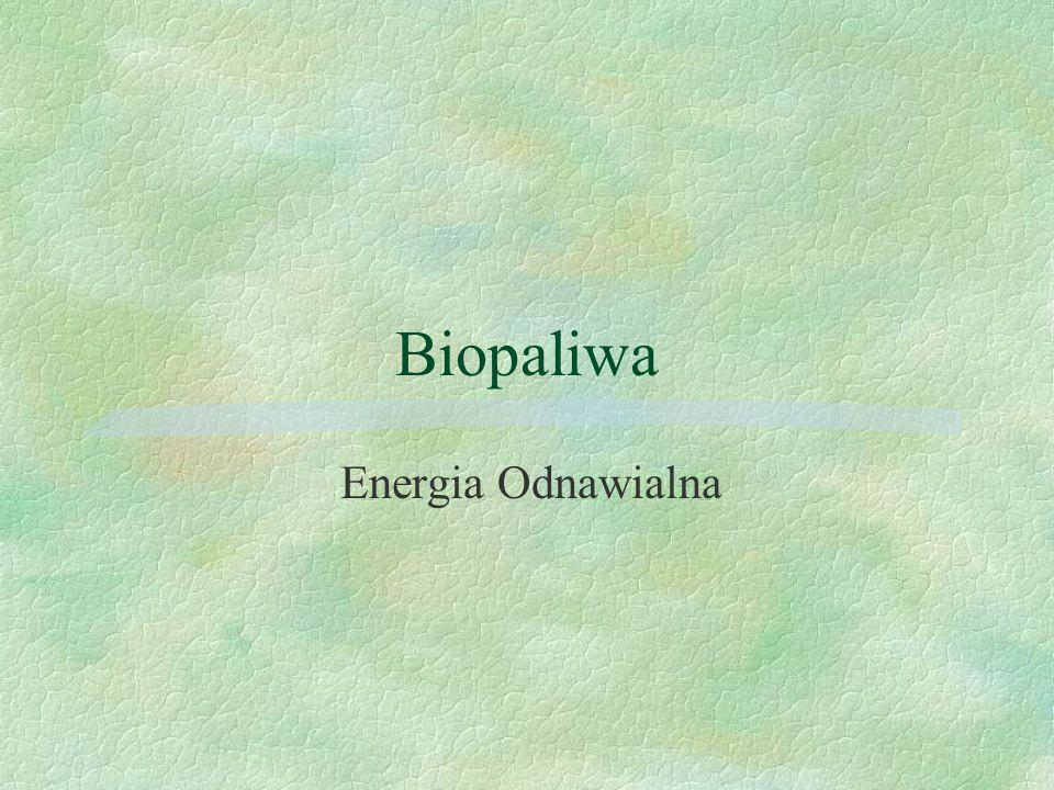 Biopaliwa Energia Odnawialna