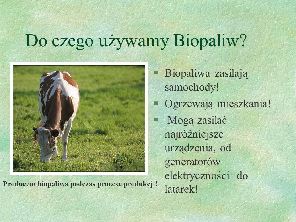 Do czego używamy Biopaliw.§Biopaliwa zasilają samochody.