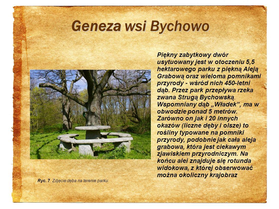 Geneza wsi Bychowo Piękny zabytkowy dwór usytuowany jest w otoczeniu 5,5 hektarowego parku z piękną Aleją Grabową oraz wieloma pomnikami przyrody - wś