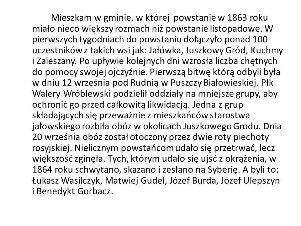 Mieszkam w gminie, w której powstanie w 1863 roku miało nieco większy rozmach niż powstanie listopadowe.