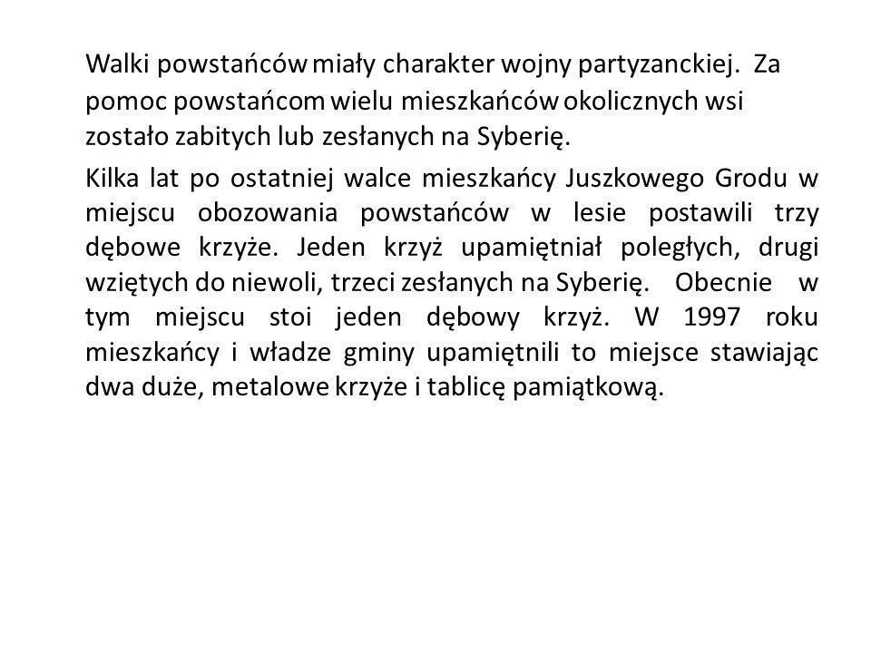 Walki powstańców miały charakter wojny partyzanckiej.
