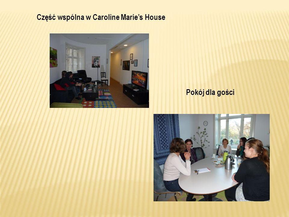 Część wspólna w Caroline Maries House Pokój dla gości