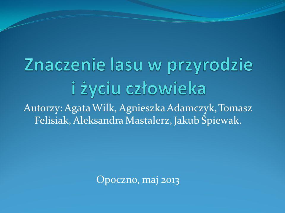 Autorzy: Agata Wilk, Agnieszka Adamczyk, Tomasz Felisiak, Aleksandra Mastalerz, Jakub Śpiewak. Opoczno, maj 2013