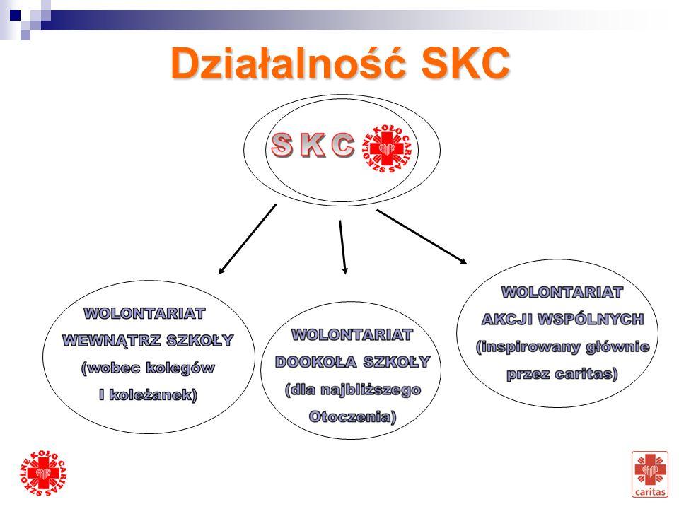 Działalność SKC