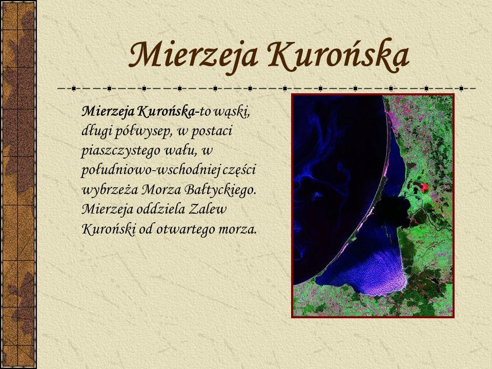 Mierzeja Kurońska Mierzeja Kurońska-to wąski, długi półwysep, w postaci piaszczystego wału, w południowo-wschodniej części wybrzeża Morza Bałtyckiego.