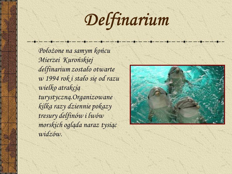 Delfinarium Położone na samym końcu Mierzei Kurońskiej delfinarium zostało otwarte w 1994 rok i stało się od razu wielko atrakcją turystyczną.Organizo