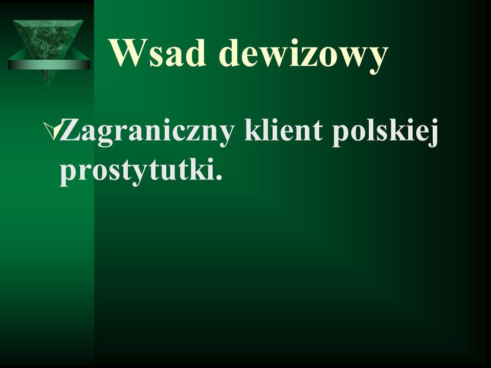 Wsad dewizowy Zagraniczny klient polskiej prostytutki.